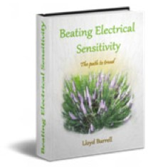 Beating Electrical Sensitivity eBook and Training Package